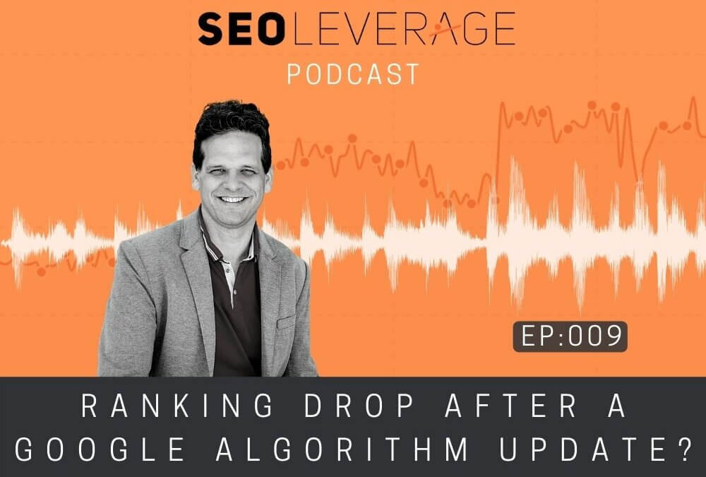 009 - Ranking Drop After a Google Algorithm Update?